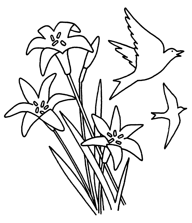 Fantástico Dibujo De Flor De Bluebonnet Para Colorear Composición ...