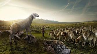 oveja entre lobos